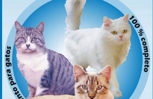 Descubra más acerca de Cat
