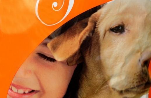Descubra más acerca de Puppy