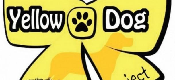 Yellowdog2 E1389787676219