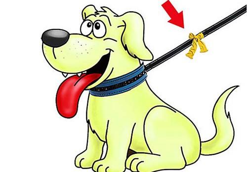 Proyecto-del-perro-amarillo